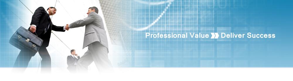 professional values